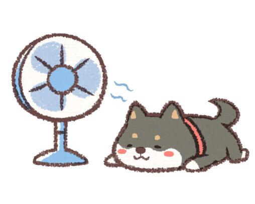【えっ、生きてるけど?】医師が警告!「扇風機あたり続けると死ぬ。」