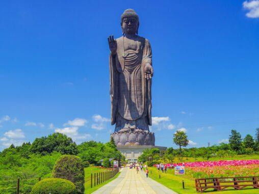 【ウルトラマンよりも…】日本の仏像の大きさランキング
