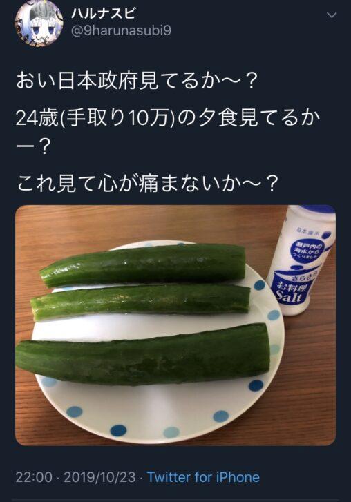 【地下で働いてるの?】手取り10万円男性のお夕食