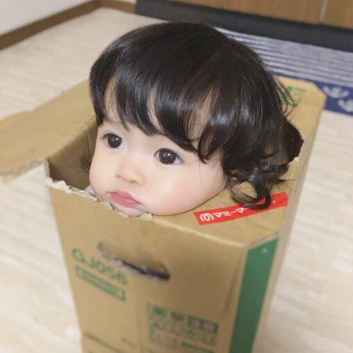 【箱入り娘】「リルな人形だなあ。でももっとかわいく作ればいいのに」→人んちの子供だった!