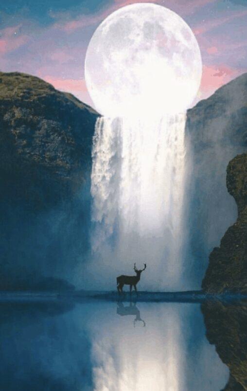 【シシガミ様じゃん】かっこいい鹿さんの画像