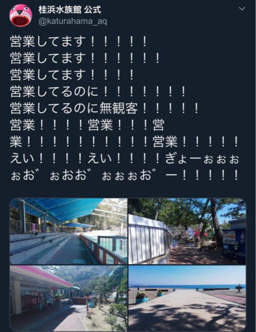 【ガラガラ!】高知の桂浜水族館さん、営業してるのに客0人で発狂
