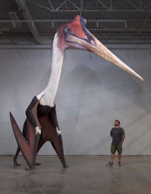 【恐竜鳥】「ケツァルコアトルス」とかいう翼竜、ガチでヤバかった