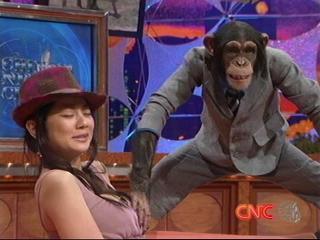 【ニュース】チンパンジー、小池栄子の乳を触る(大木のアドリブ面白い)