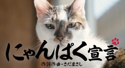 【さだまさし】「にゃんぱく宣言」CMが注目される ACジャパン急増で