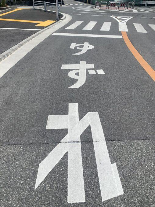 【道路標示画像】なんだこれ(どよれ・飛び出し汁)