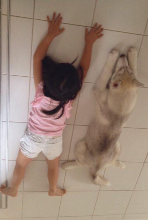 【友達のように仲良し】パパ「娘と犬の成長率が同じ」パシャ←エッッ