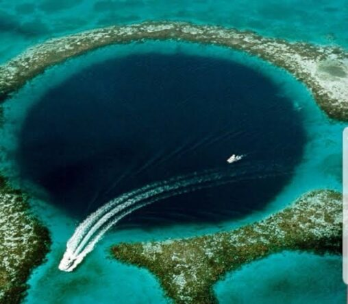 【海底穴】こういう画像に恐怖を感じるキチガイが一定層いるらしい