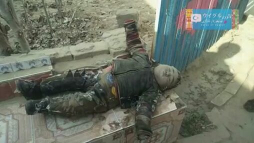 【閲覧注意世界に拡散】ウイグル族の親を失った子供が凍死してしまったショッキングな写真が公開