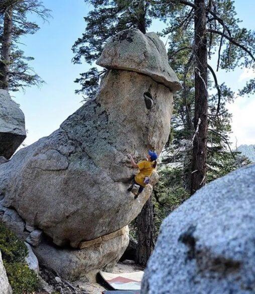【天然岩】これ…ちんこ…だよね…
