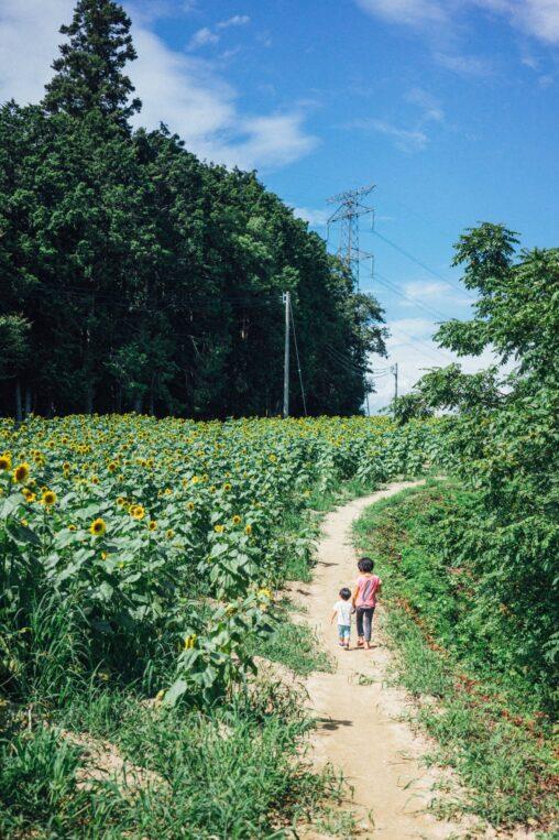 【懐かしい風景】夏の田舎の子どもとノスタルジックな画像あげてく