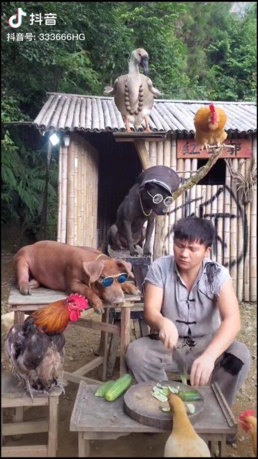 【食料】中国人さん、漫画のような生活を送っていた!これ絶対毎日楽しいやつ