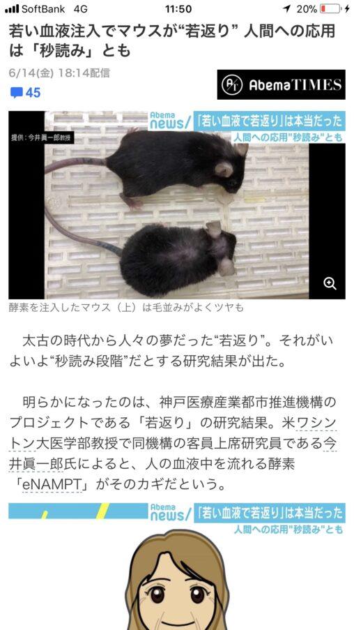 【マウス実験】ハゲ、若者の血液注入で毛が生えてフサフサになる事が判明!