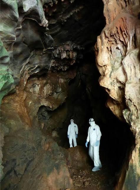 【ウイルス】WHO、中国奥地の洞窟の中で新型コロナの調査を開始してしまう