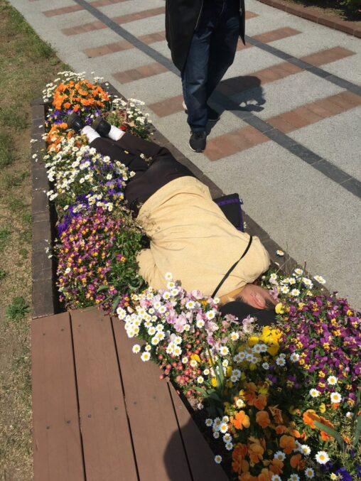 【関わらない】日本人、倒れてる人を助けずに写真を撮ってしまう