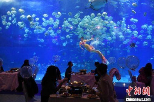 【画像】中国の飲食店、クッソ豪華だったw 日本の飲食店のショボさが際立つな…