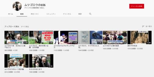 【656】ムツゴロウさん、youtubeを始めるも登録者数1550人の大爆死