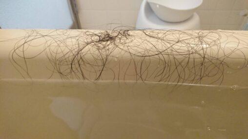【ロン毛!】今日風呂場で抜けた髪の毛の量